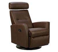 Fjords Ergonomic Swing Recliner Zero Gravity Relaxor Chair